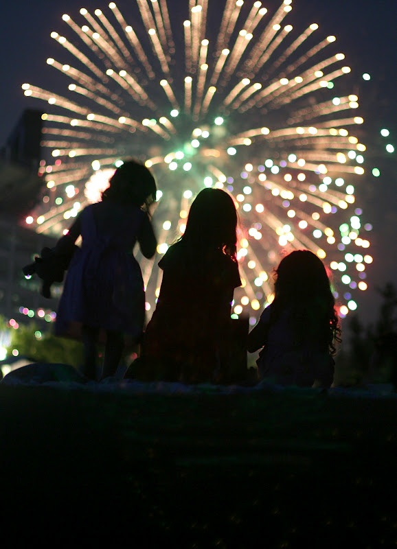 Love this silhouette shot with the fireworks blurred out in the background by Br…