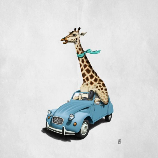 Loving this pic Riding High by rob_art_animals via @mipic_app art | decor | wall art | inspiration | animals | home decor | idea | humor | gifts