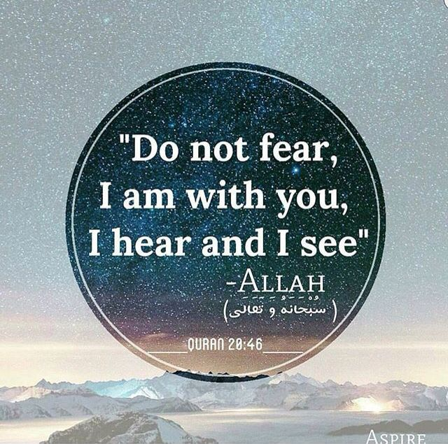 Why are you ignoring Allah? Why are you not turning to him? Why do you think that you can make your life better than Him? Turn to Allah.