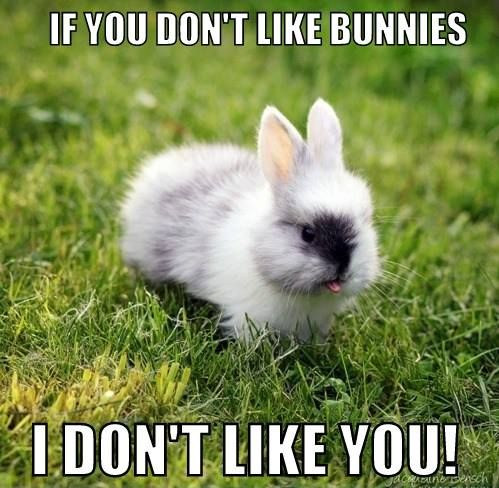 You Tell'em Bunny...!! ☺☺☺ The Best Rabbit Food Delivered Fresh to your door! Click ❤ http://shop.smallpetselect.com/ ❤ FbookFriends: Use code ✔softNgreen✔ For Free Shipping