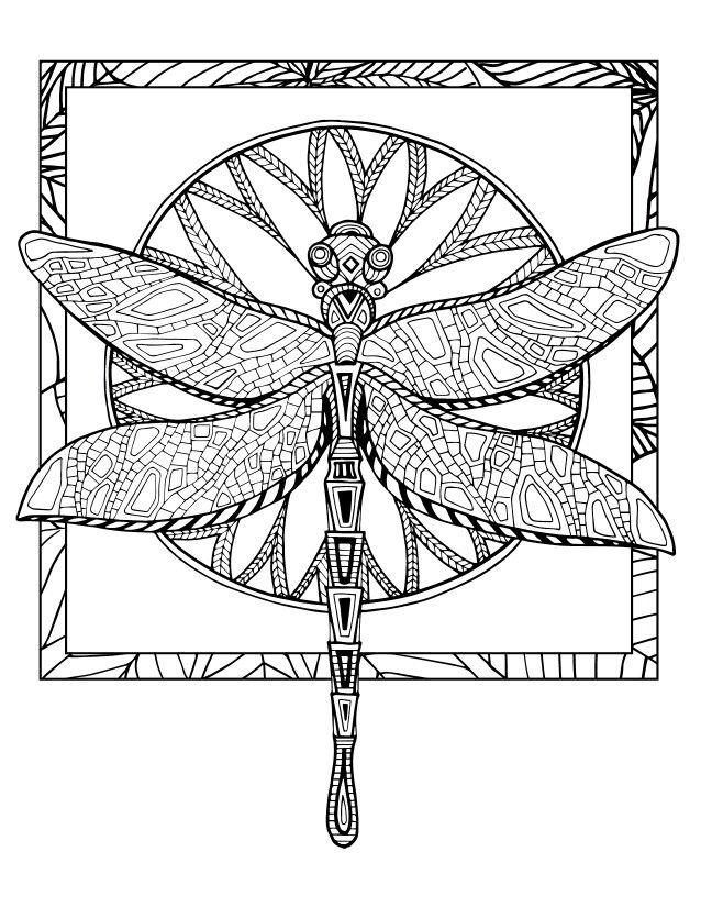 Dragon Fly Coloring SheetsAdult ColoringColoring BooksDragonfly