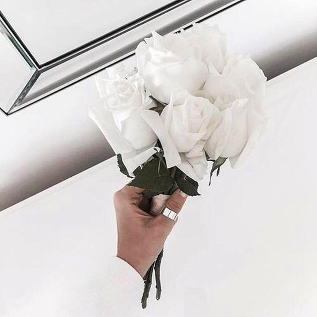 You are a garden of a single rose blossoming in infinite ways 🥂 #whiterose #quote #qotd