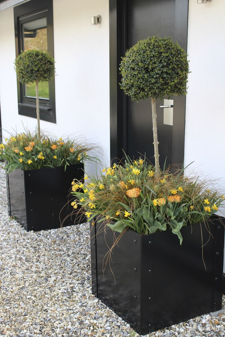 Bespoke steel planters can be finished to customer specification. This gloss black finish has been superbly executed to create this outstanding contemporary look, fit for any garden