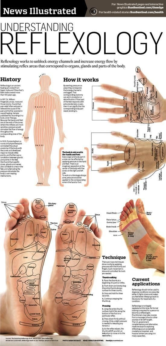 Reflexology is the application of appropriate pressure to specific points. Reflexologists believe that these areas and reflex points correspond to different body organs and systems, and that pressing them has a beneficial effect on the organs and person's general health
