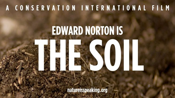 Nature Is Speaking – Edward Norton is The Soil | Conservation Internatio...
