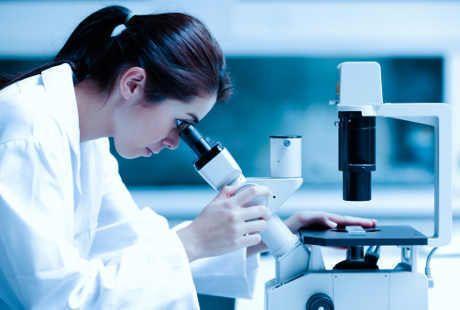 Ingin tahu biayanya Terspi Stem Cell? Rp 1 per satu sel
