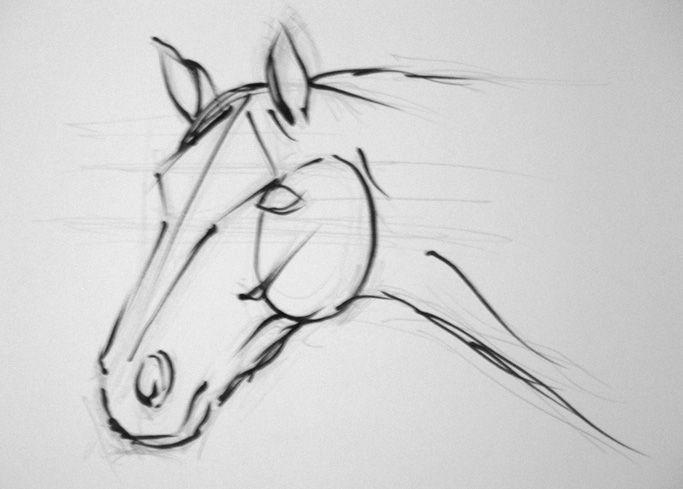 Resultado de imagen para dibujos de caballos a lapiz faciles de hacer paso a paso