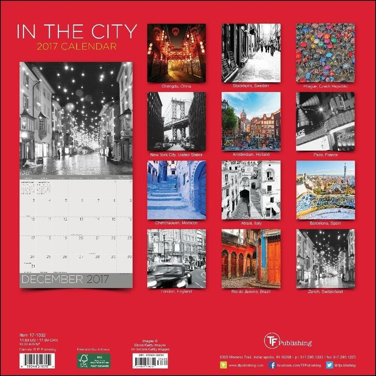 In the City 2017 Wall Calendar