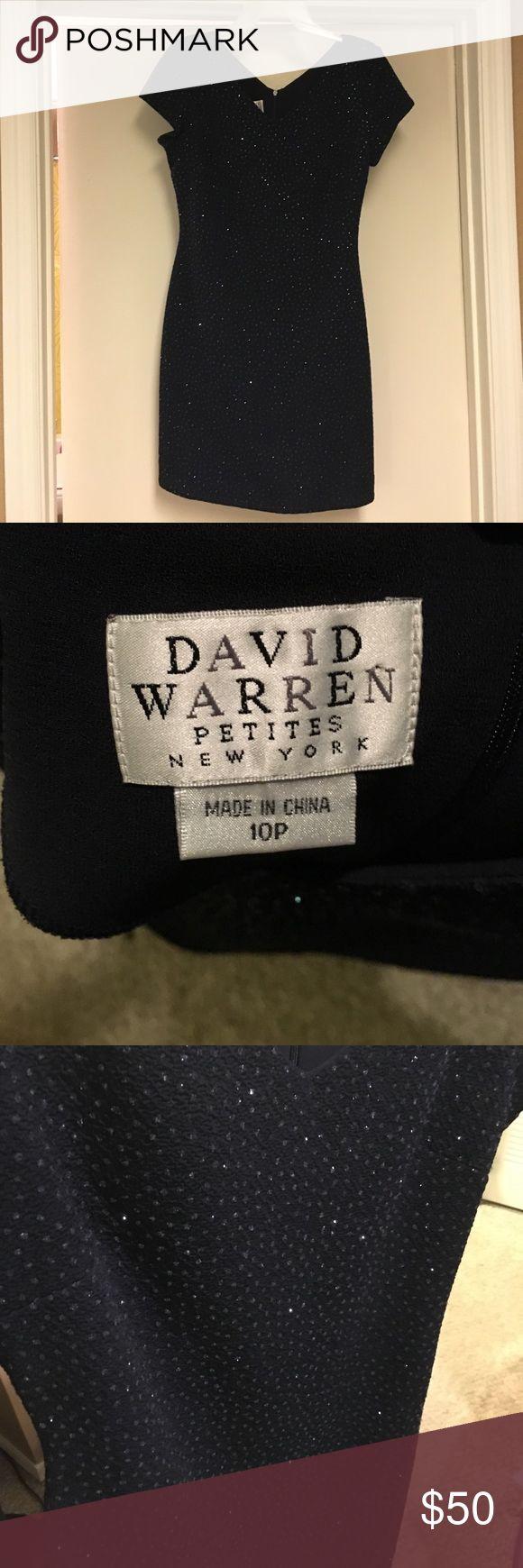 David Warren Petites Cocktail dress Dark navy, embroidered sequins, with flattering cut. Hemmed Zipper on back. Small split on back side. david warren Dresses Midi