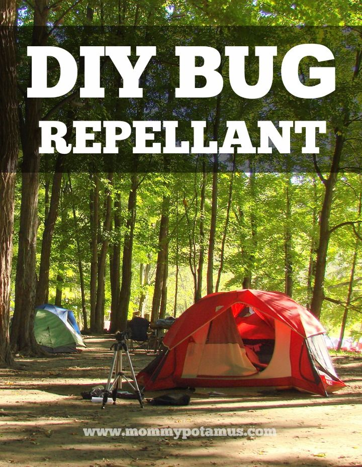 Easy Homemade Bug Repellent