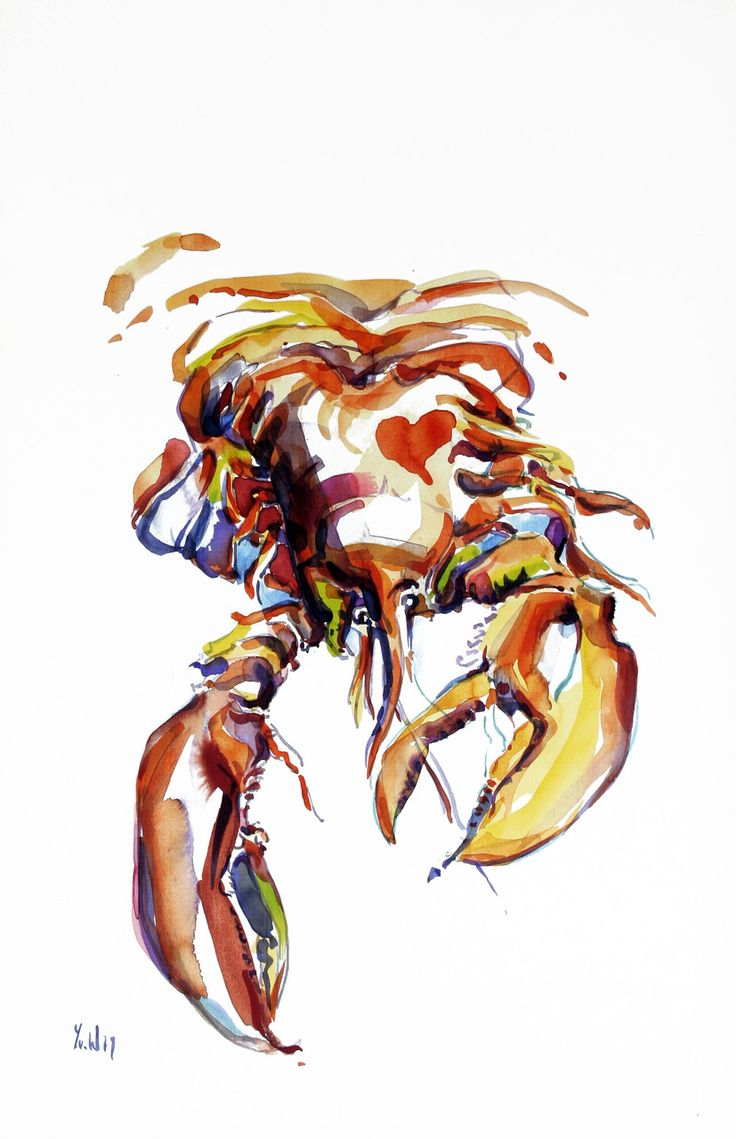 249 best lobster lobster images on pinterest lobsters crabs and