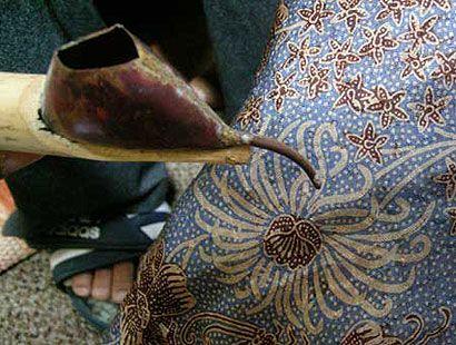 The Beautiful Indonesian Batik