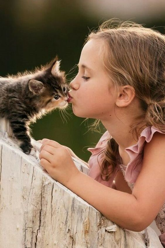 Use this day to spoil your kitty with extra love and affection to show them just…