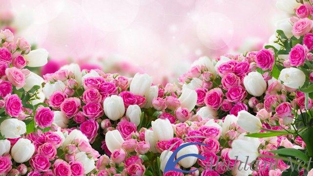 تفسير رؤية الزهور في الحلم او المنام الزهور الزهور فى الحلم الزهور في الحلم الزهور في المنام Floral Wreath Floral Wreaths