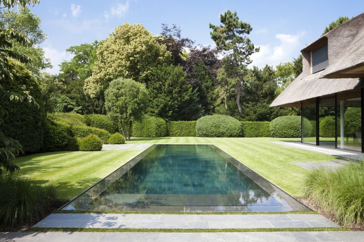 Our pool will be zero edge, rectangular and surrounded by turf like this one