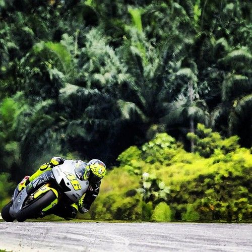 Welcome to the jungle - Rossi at preseason testing, Sepang.