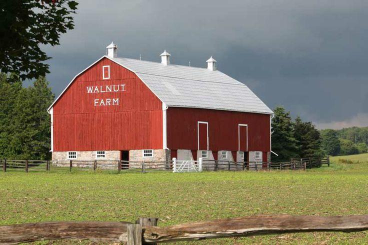 Farm in Sharon (East Gwillimbury), Ontario