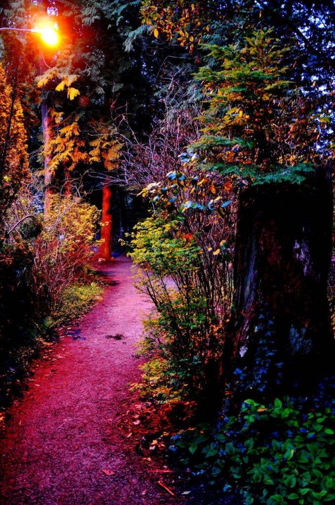 Garden Walk Buffalo Through The Garden Gates 6: 51 Best Mystical Images On Pinterest