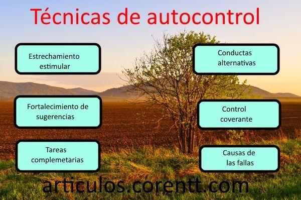 Técnicas De Autocontrol Desarrollo Personal Autocontrol Inteligencia Emocional El Arte De La Seducción