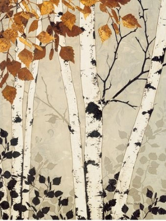 birch tree- my favorite                                                                                                                                                      More