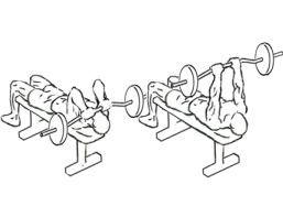 Extensões de tríceps em banco plano