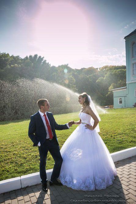 Курск свадебные фотографы
