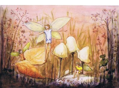 Signed limited edition print 'Adventures at Sunrise' by June Evelyn from 'Phoebe`s Book of Fairy Stories'. Available at Books Illustrated. http://www.booksillustrated.com.au/bi_prints_indiv.php?id=43&image_id=293