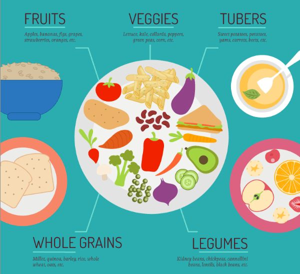 What Is A Whole-Food, Plant-Based Diet?