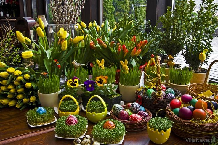 Easter decoration #easter #tradition #easterbasket #polishtradition #bieszczady #ustrzykidolne #ustrzyki #eastereggs #eggs #colours #tulipany #tulips #spring #wiosna