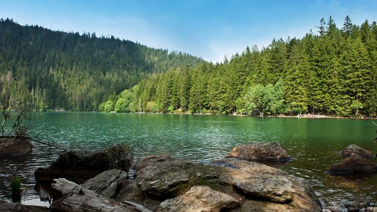 Sumava National Park, Czech Republic
