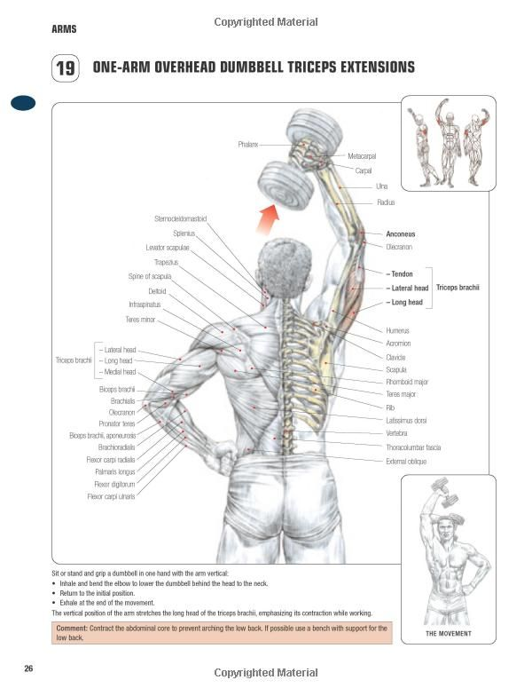 One-arm overhead dumbbell triceps extension ~ Re-Pinned by Crossed Irons Fitness