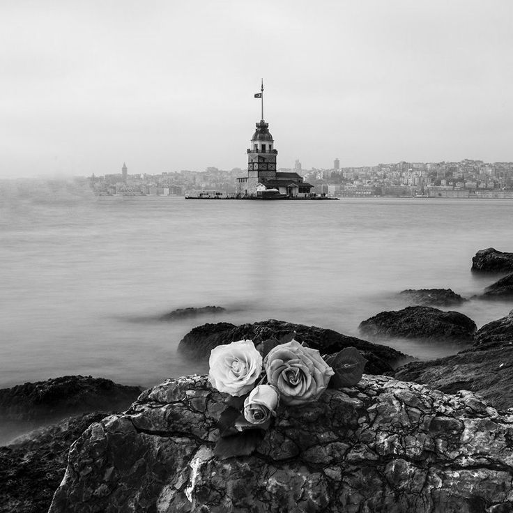 opposite to Maiden's Tower by Mehmet Çoban - Photo 142429731 - 500px.  #mehmetcoban #rose #gül #maidenstower #leanderstower #towerofleandros #tower #kızkulesi #üsküdar #istanbul #turkey #türkiye #bosphorus #istanbulboğazı #boğaz #boğaziçi #travel #vacation #voyager #city #light #sea #travel #augsburg #munich #muc #münchen #stuttgart #ankara #izmir