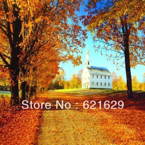 Красивый осенний пейзаж 10'x10 'ср Компьютерная роспись Scenic Фотография Фон Фотостудия Фон ДТ-12-42