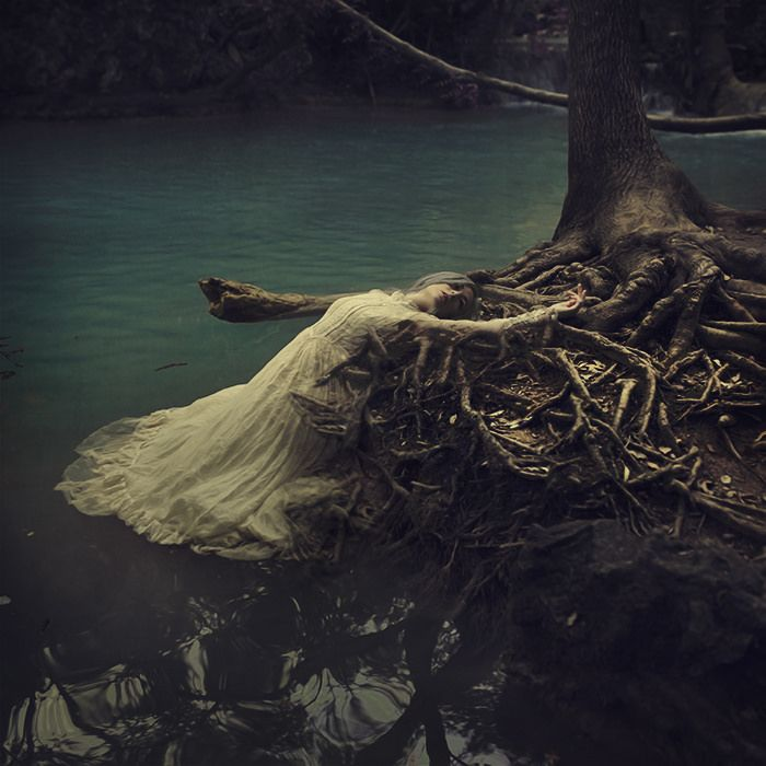 from water to dust | by brookeshaden