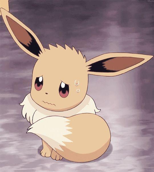 Pokemon Stufful In Hotel Room