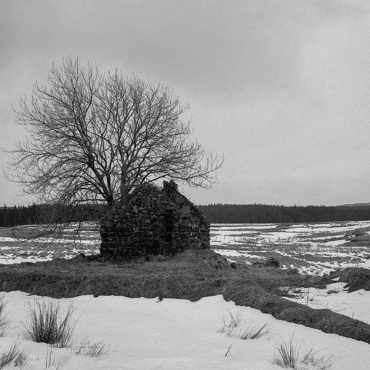 Desolate Cottage – Cushendall, Northern Ireland