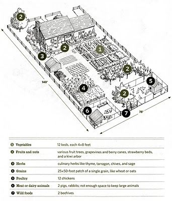 1/4 acre farm plan (yes, please!)  (Sans pigs & with half the hens.)