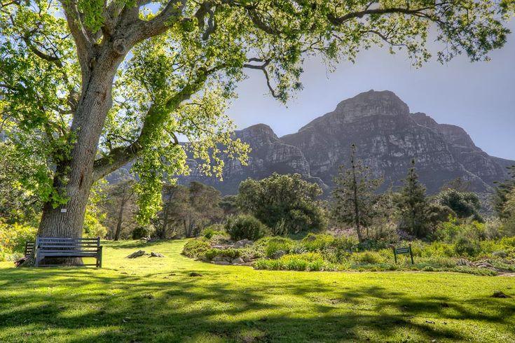 Michael Morris - Trekking Tripod - Kirstenbosch Gardens