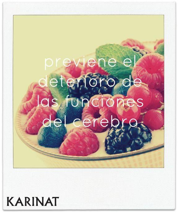 Beneficios de los Frutos Rojos Karinat! KARINAT Berries health benefits!