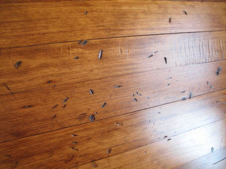 22 best images about painting aging wood on pinterest for Distressed wood flooring