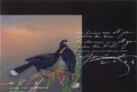 Huia (2006) PETER JAMES SMITH