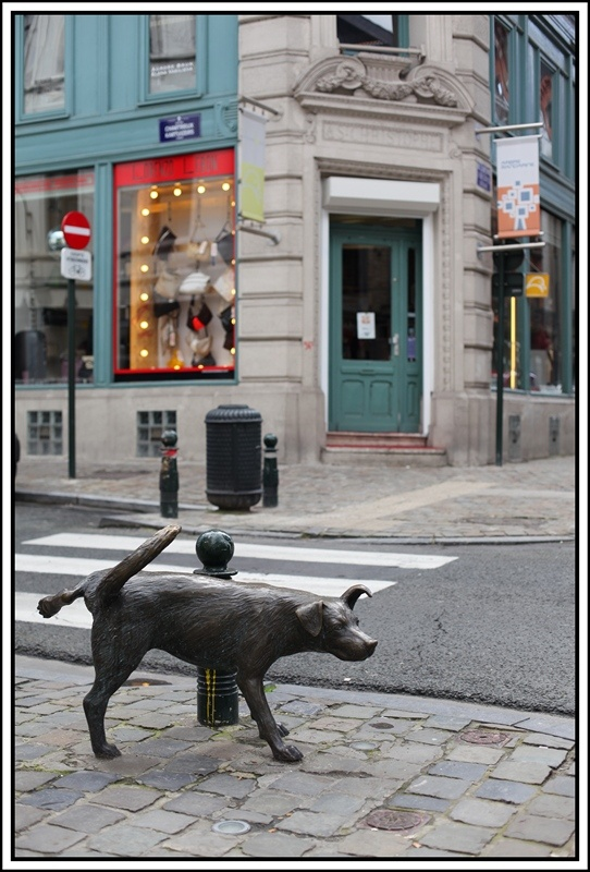 "In Brussels, a ""zinneke"" is a dog, without specific race. We owe this ""zinneke"", which relieves the corner of rue des Chartreux, the sculptor Tom Frantzen. It symbolizes the multicultural character of Brussels and also pays tribute to the Manneken Pis."