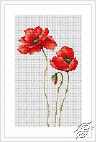 Poppies - Cross Stitch Kits by Luca-S - B2225