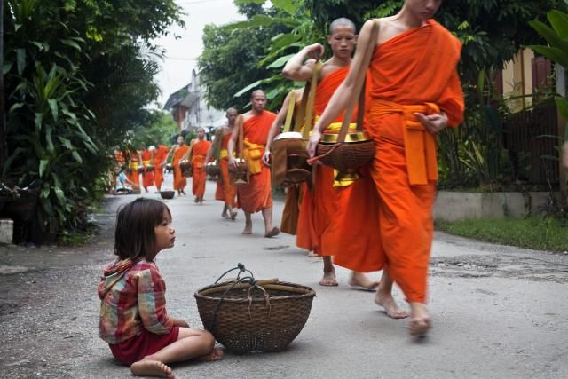 Le Tak Bat, procession des moines pour recevoir les offrandes, Luang Prabang