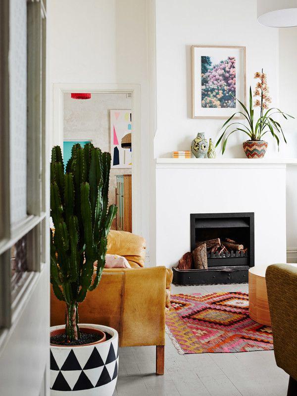 Cactus/Fireplace