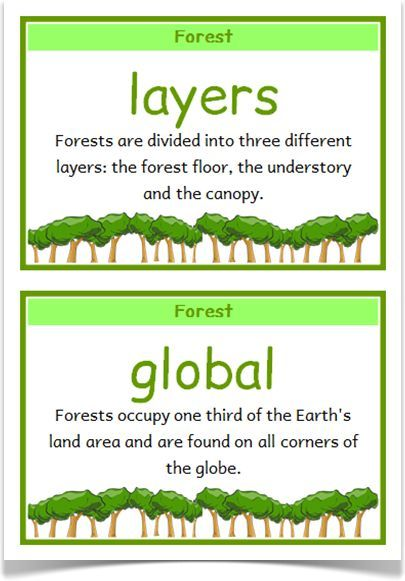 Habitats Fact Cards - Treetop Displays - A set of 48 A5 fact cards that give fun and interesting facts about a range of different habitats. Includes: forest, desert, under the sea, jungle, Polar regions, mountains, grasslands and rainforests. Visit our website for more information and for other printable classroom resources by clicking on the provided links. Designed by teachers for Early Years (EYFS), Key Stage 1 (KS1) and Key Stage 2 (KS2).