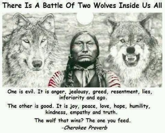 Native American Wisdom Quotes | Native American Quotes