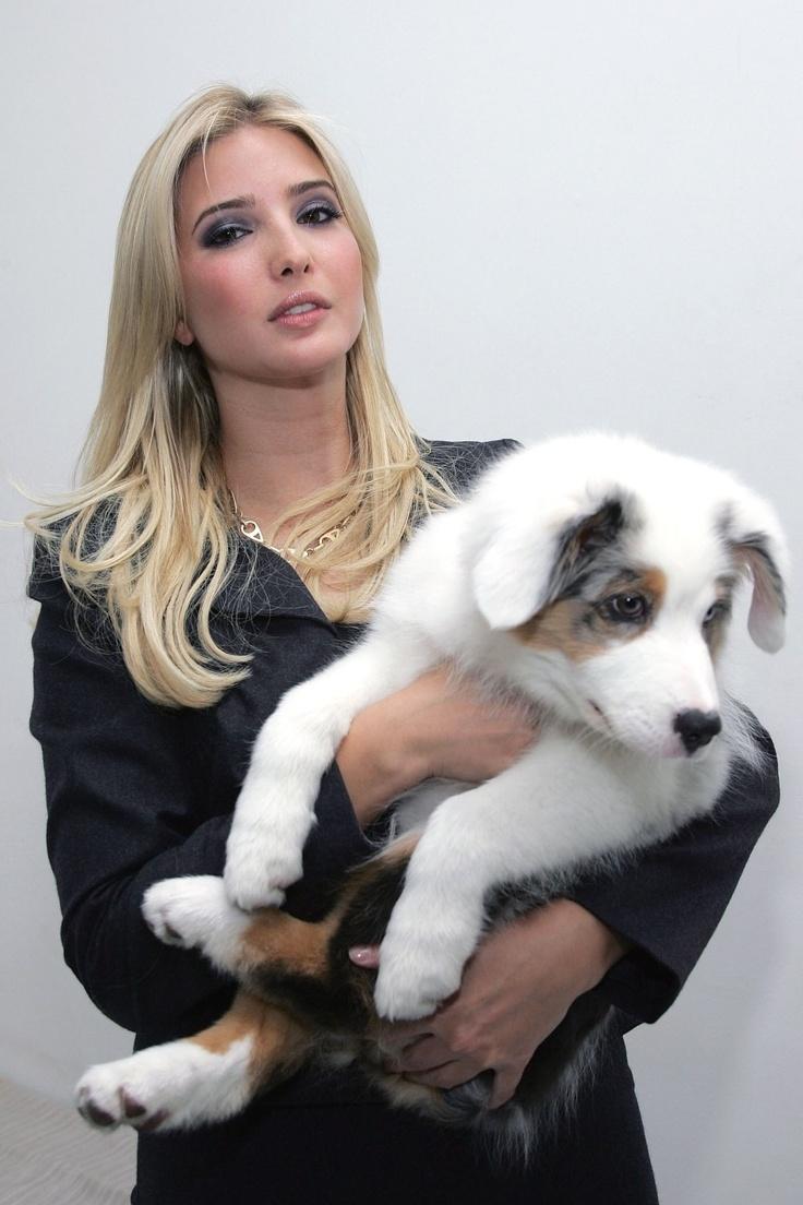 Ivanka Trump dog | Simply Beautiful... | Pinterest | Dogs ...
