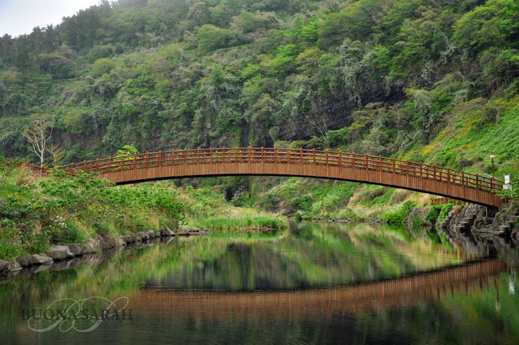 """Olle Trail, Jeju Island, South Korea.  The Olle trails on Jeju Island are 200 km of walking paths that cars cannot access.  This particular picture was taken near Seogwipo (pronounced """"SO-gey-poh)"""