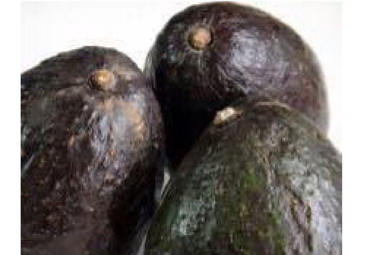 0121 抗癌とデトックス  ビタミンEは活性酸素から細胞膜を守ってくれるので美容に欠かせない栄養素と言われていています。 また、血液をサラサラ綺麗にし、血管を若返らせてくれる働きもしてくれます。 そんなビタミンEを多く含んだ果物がアボカドです。 アボカドは抗がん食品といわれいます。 最近の研究では白血病の治療に効果があることも明らかになりました。 カナダ・ウォータールー大学の研究者が、がん研究の専門誌「Cancer Research」に論文を発表し 現在、実用化に向け治療薬の開発を進めているとのことです。 また、アボカドは4つのデトックス能力を持っています。 ・グルタチオンで肝臓の解毒力アップ ・オレイン酸が血液内の悪玉…
